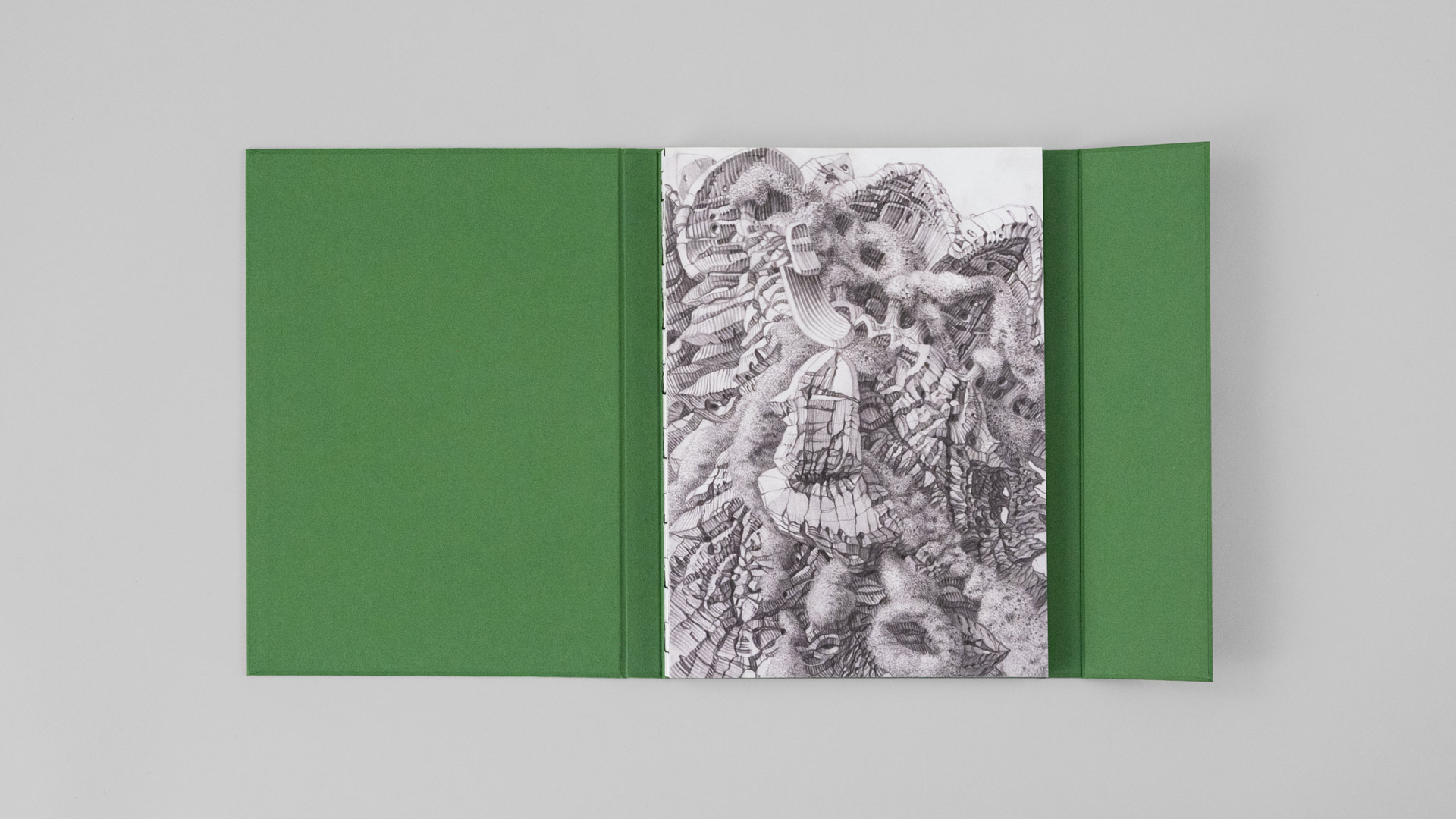 Buchgestaltung für die Edition Stephan Witschi — l'équipe visuelle — Grafikatelier
